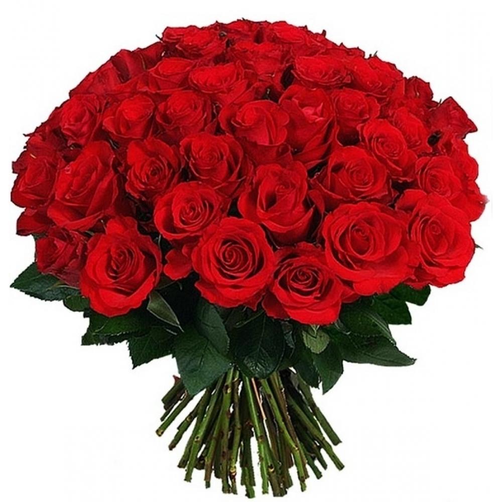 Букет из 51 розы (60 см) Голландия