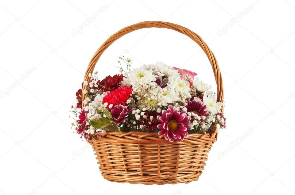 хризантемы корзина
