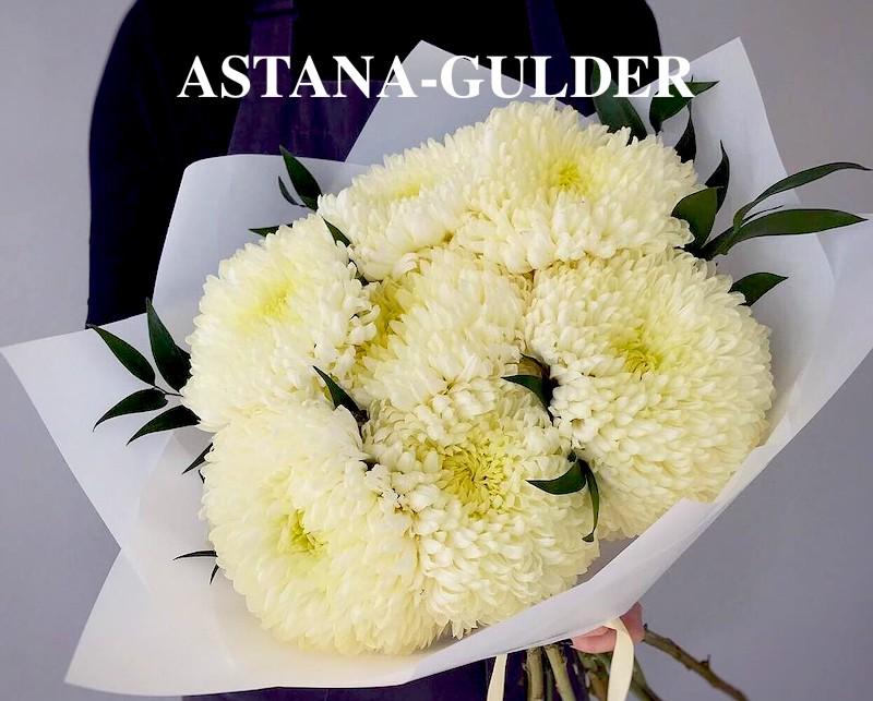 белые хризантемы в астане АSTANA-GULDER
